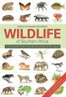 Wildlife of Southern Africa: A Field Guide to the Animals and Plants of the Region Cover Image