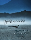 Dolphins and Whales 2020 Calendar: 14-Month Desk Calendar to Celebrate the World's Cetaceans! Cover Image
