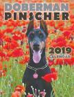 Doberman Pinscher 2019 Calendar Cover Image