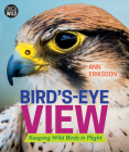 Bird's-Eye View: Keeping Wild Birds in Flight Cover Image