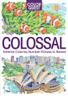 Color Quest: Colossal: The Ultimate Color-By-Number Challenge Cover Image