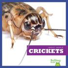 Crickets (Insect World) Cover Image