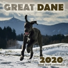 Great Dane 2020 Mini Wall Calendar Cover Image