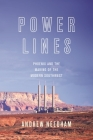 Power Lines: Phoenix and the Making of the Modern Southwest (Politics and Society in Modern America #107) Cover Image