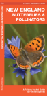 New England Butterflies & Pollinators: A Folding Pocket Guide to Familiar Species Cover Image