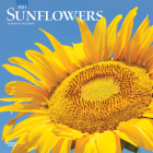 Sunflowers 2021 Square Cover Image
