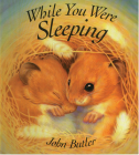 While You Were Sleeping Cover Image