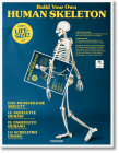 Build Your Own Human Skeleton - Life Size! Cover Image