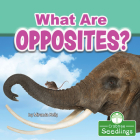 What Are Opposites? Cover Image