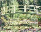 Monet Waterlily Garden Keepsake Boxed Notecards Cover Image