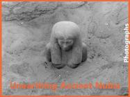 Unearthing Ancient Nubia: Photographs from the Harvard University-Boston Museum of Fine Arts Expedition Cover Image