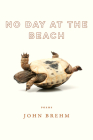 No Day at the Beach (Wisconsin Poetry Series) Cover Image