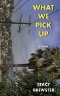 What We Pick Up Cover Image