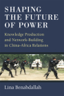 Shaping the Future of Power: Knowledge Production and Network-Building in China-Africa Relations Cover Image