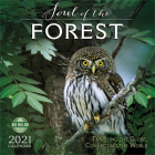 Soul of the Forest 2021 Wall Calendar: Traveling the Globe, Connecting the World Cover Image