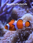 Beautiful Marine Life Full-Color Picture Book: Marine Life Picture Book for Children, Seniors and Alzheimer's Patients -Mammals Wildlife Nature Cover Image