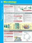 Microbiology Sparkcharts, 42 Cover Image
