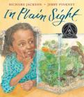In Plain Sight: A Game Cover Image