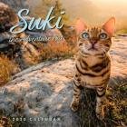 Suki the Adventure Cat 2020 Wall Calendar Cover Image