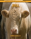 Bull: Amazing Photos and Fun Facts about Bull Cover Image