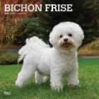 Bichon Frise 2020 Square Foil Cover Image