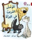 Collins Big Cat Arabic – Monster in the Mirror: Level 14 Cover Image