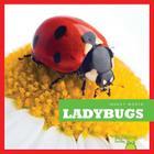 Ladybugs (Insect World) Cover Image