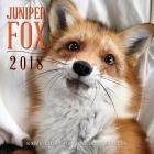 Juniper Fox 2018: 16 Month Calendar Includes September 2017 Through December 2018 Cover Image