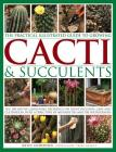 The Practical Illustrated Guide to Growing Cacti & Succulents: The Definitive Gardening Reference on Identification, Care and Cultivation, with a Dire Cover Image