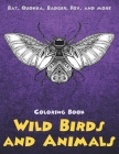 Wild Birds and Animals - Coloring Book - Bat, Quokka, Badger, Fox, and more Cover Image