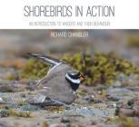 Shorebirds in Action Cover Image