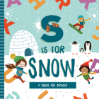 S is for Snow Cover Image