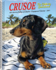 Crusoe the Celebrity Dachshund 2021 Engagement Calendar (Dog Breed Calendar) Cover Image