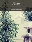 Ficus: How to grow and care Cover Image