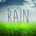 Rain (Weather Explorers) Cover Image