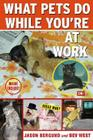 What Pets Do While You're at Work Cover Image