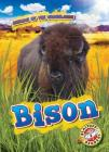 Bison Cover Image