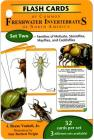 Flash Cards of Common Freshwater Invertebrates of North America Cover Image