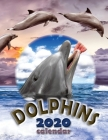 Dolphins 2020 Calendar Cover Image