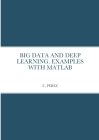Big Data and Deep Learning. Examples with MATLAB Cover Image