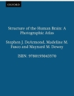 Structure of the Human Brain: A Photographic Atlas Cover Image