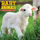 Baby Animals 2021 Wall Calendar Cover Image