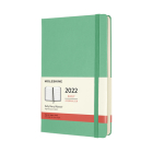 Moleskine 2022 Daily Planner, 12M, Large, Ice Green, Hard Cover (5 x 8.25) Cover Image