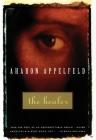 The Healer (Appelfeld) Cover Image