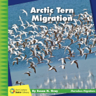 Arctic Tern Migration Cover Image