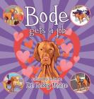 Bode Gets a Job Cover Image