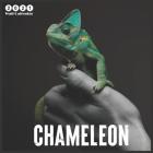 2021 chameleon: 2021 Wall & Office Calendar, 12 Month Calendar Cover Image