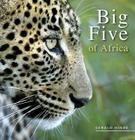 Big Five of Africa Cover Image
