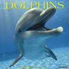 Dolphins 2021 Wall Calendar Cover Image