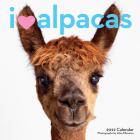 I Heart Alpacas Wall Calendar 2022 Cover Image